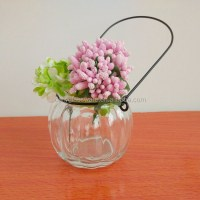 Daily Glass Vase With Hanger Hanging Flower Wall Vases ...