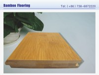 Eco Forest Bamboo Flooring Znsj Factory