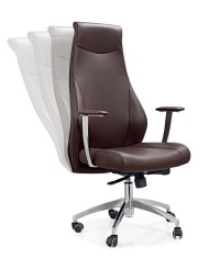 Folding Armrest Office Chair - Buy Gas Cylinder For Office ...