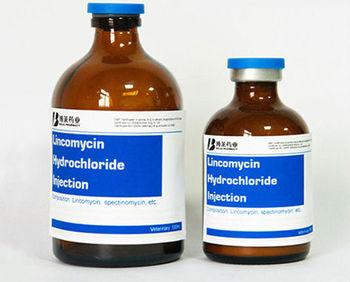 Veterinary Medicine Antibiotic Lincomycin Hydrochloride ...