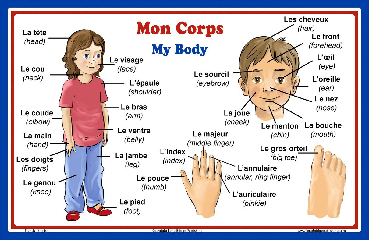 Buy French Language School Poster French Words About