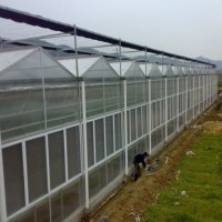 Greenhouse/custom /outdoor Grow Tent For Agricultural ...