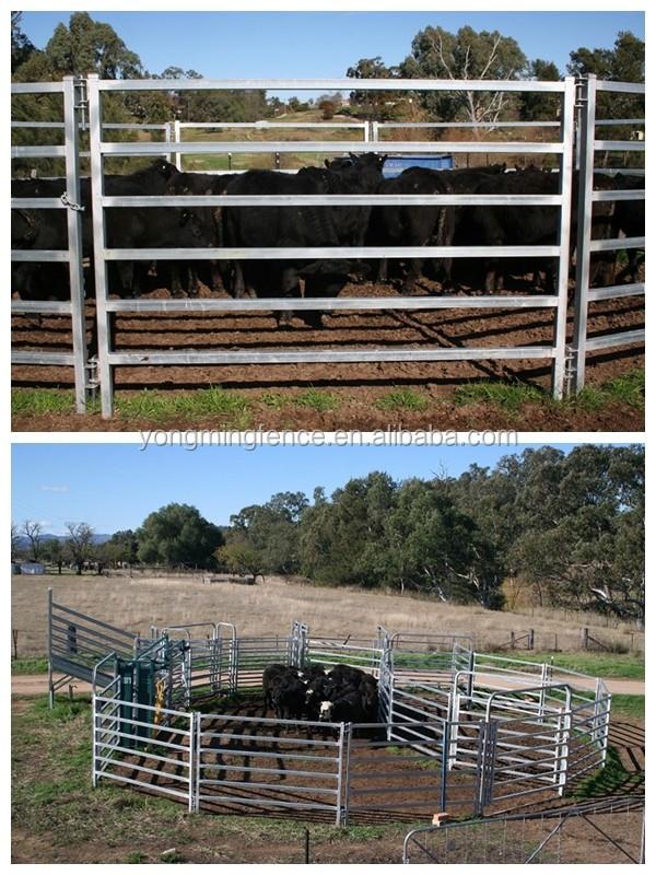 Welded Wire Livestock Panels Wholesale