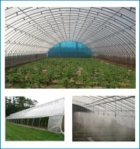 Low Cost Galvanized Pipes Vegetable Greenhouse With ...