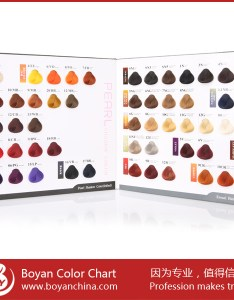 Boyan ice cream hair color chart design swatch for salon use also chartcolor rh alibaba