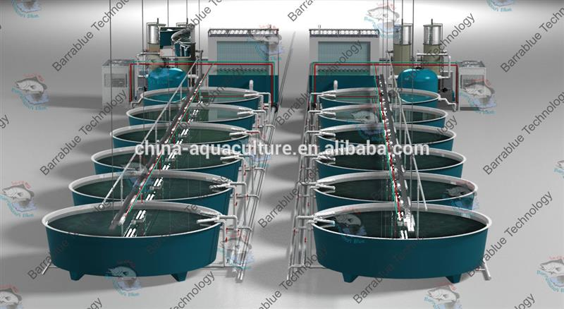Fish Hatchery Design And Layout