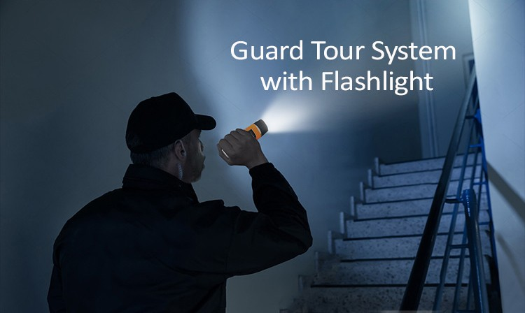 System Security Wireless Light