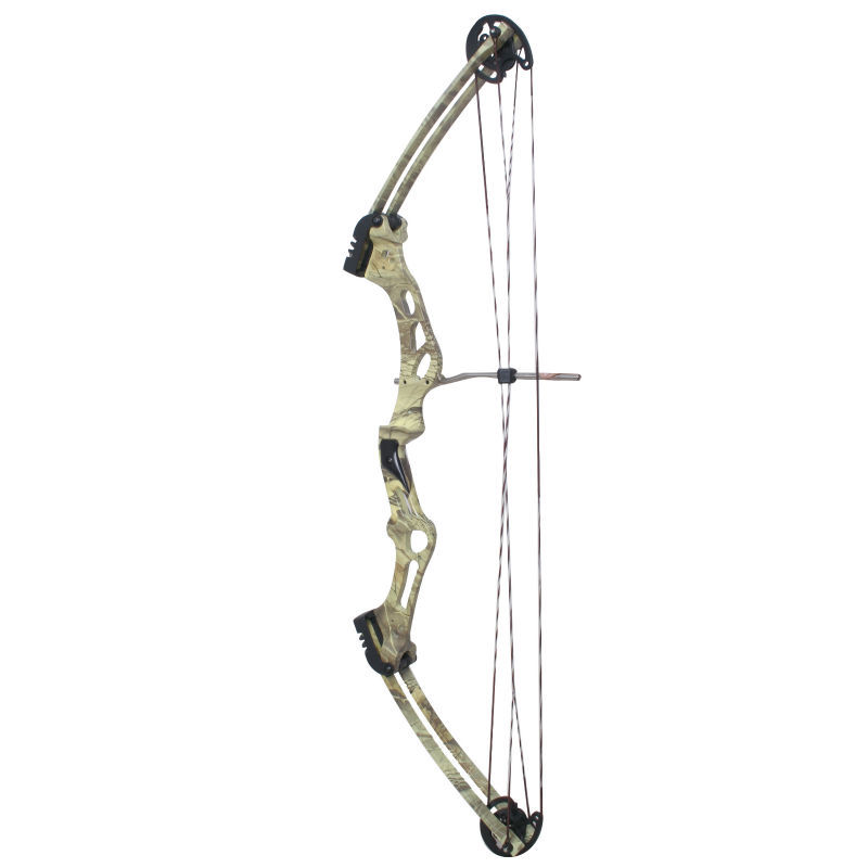 M107 Hunting Compound Bow Arrow Set Hunting Archery With