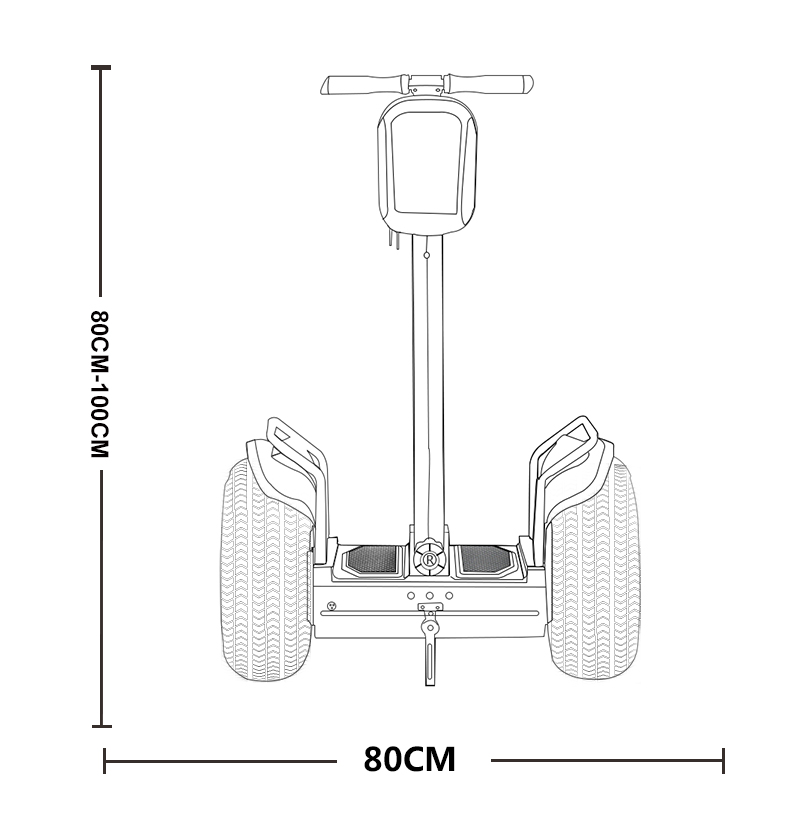 Ecorider Two Wheel Self-balancing Electric Chariot Esoi-l2