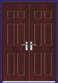 Fashion Exterior Double Door Design Pj