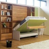 Fold Down Sofa Wall Bed,Wall Bed With Sofa And Bookshelf ...