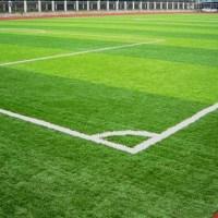 The Football Field Carpet - newlibrarygood.com