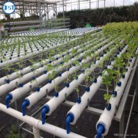 Pvc Pipe Plant Vegetable Nft Hydroponic System - Buy Nft ...