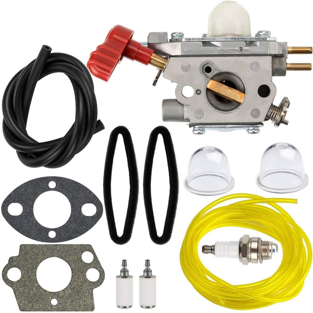 hight resolution of hipa 753 06288 carburetor tune up kit air filter for troy bilt 25cc string