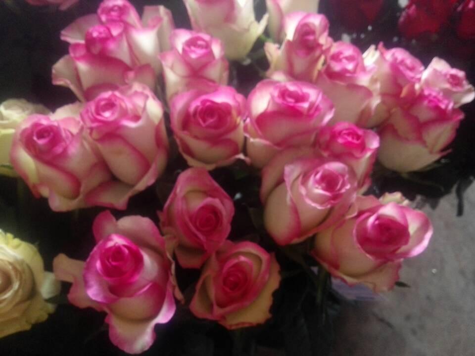 Where Buy Fresh Flowers Wholesale