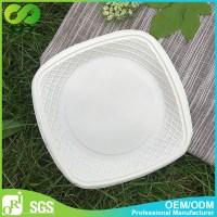 Oblong Plates Dinnerware & Oblong Dinnerware Plate Oblong ...