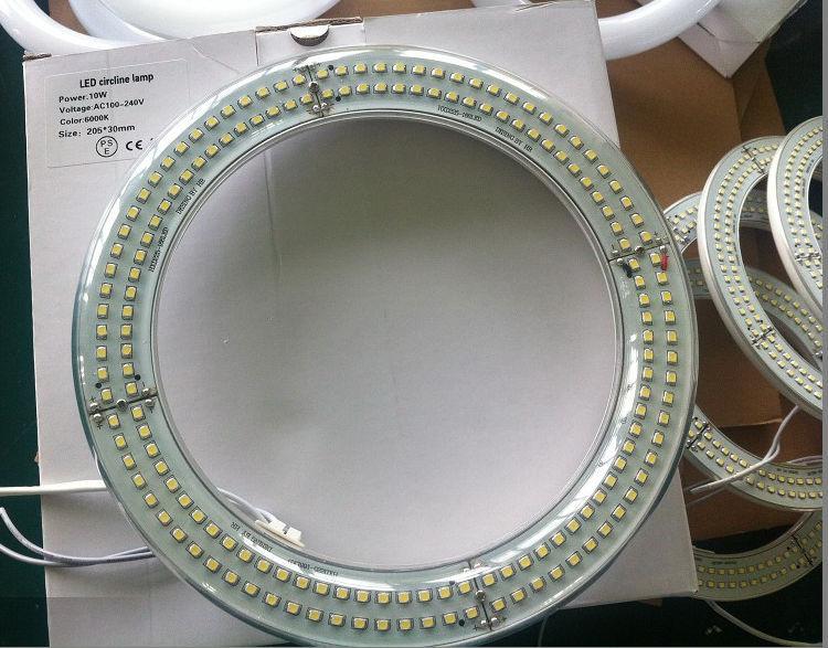 Circline Fluorescent Light Bulb