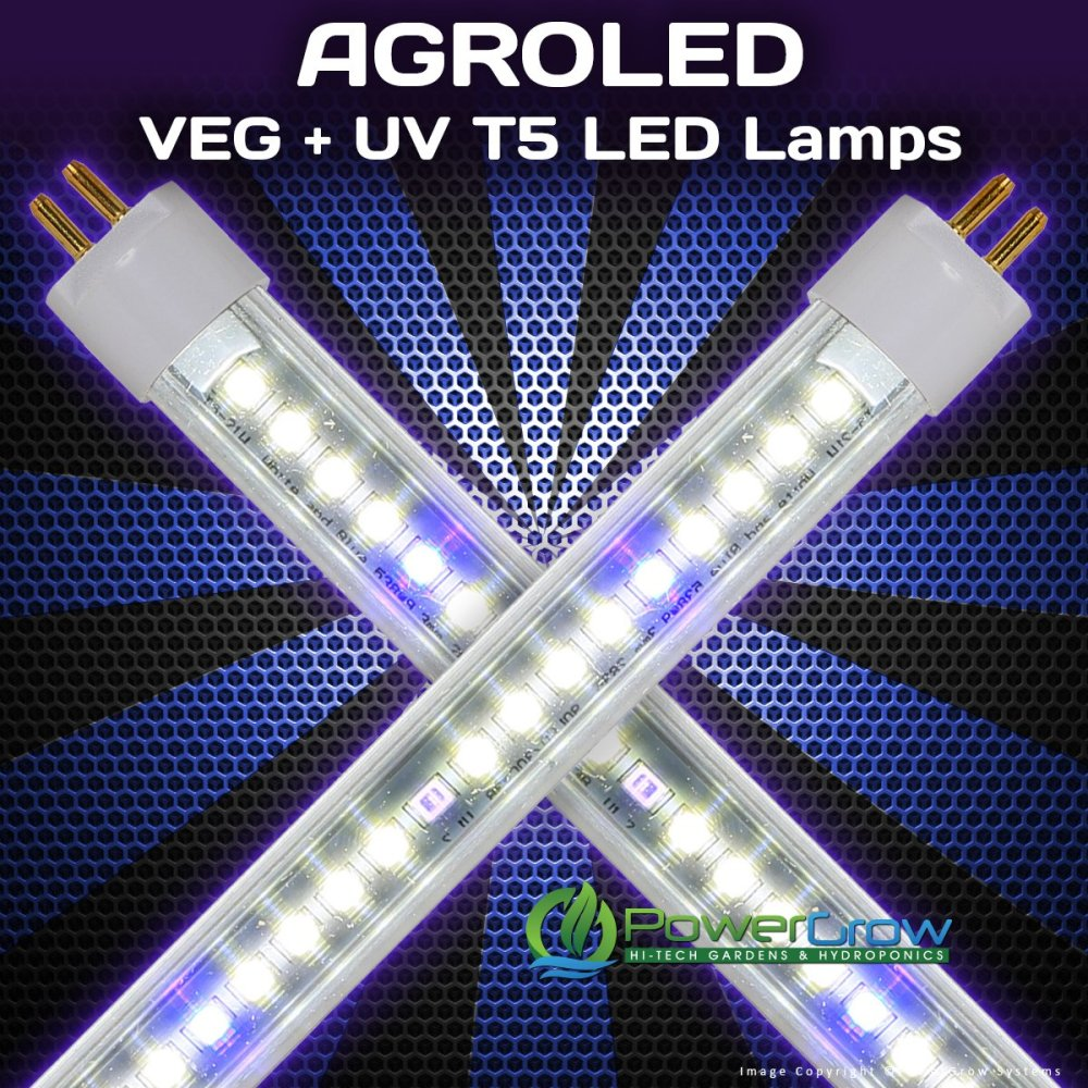 medium resolution of get quotations led t5 bulbs agroled isunlight veg uv t5 led lamps 4 4