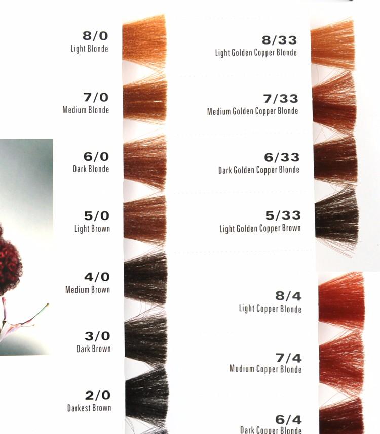 Oem Manufacturer Salon Professional Hair Dye Color Chart