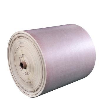 Nomex Paper/polyimide Film/nomex Paper Insulation Paper Nhn - Buy Insulation Paper Nhn Product on Alibaba.com