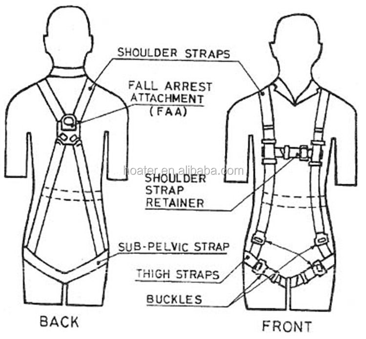 fall protection harness and lanyard