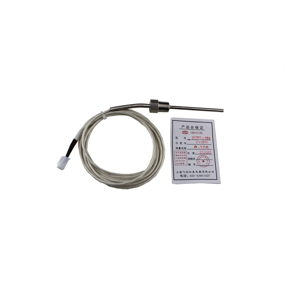 Wzpt-291 Pt100 Rtd With Compensation Cable Of The Thermal
