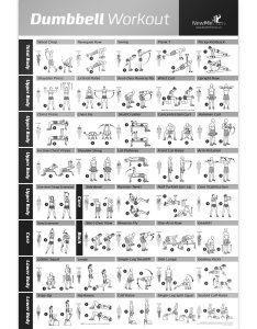 Dumbbell workout exercise poster now laminated strength training chart build muscle tone also buy rh guideibaba