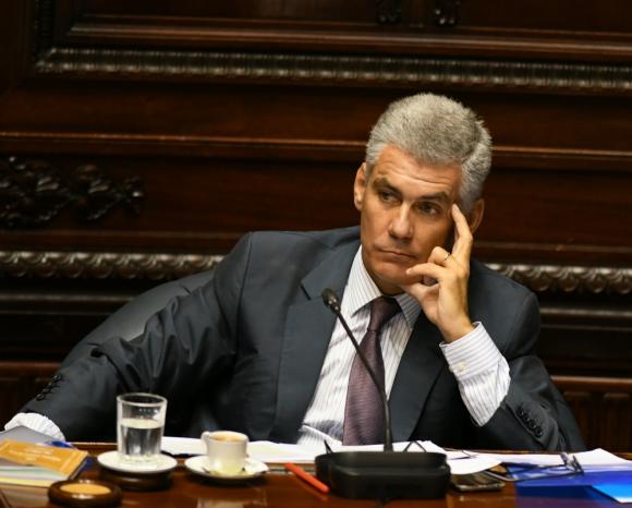 Diputado Rodrigo Goñi.