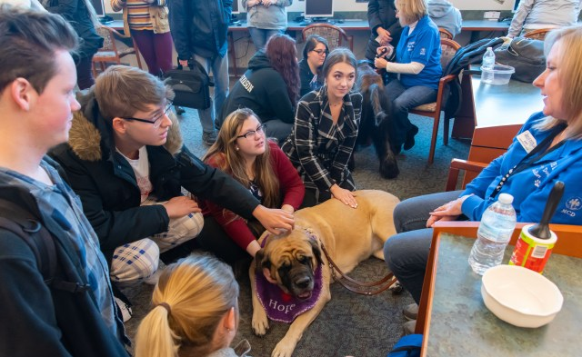 Four SC4 students pet dog during Stress Breaker event.