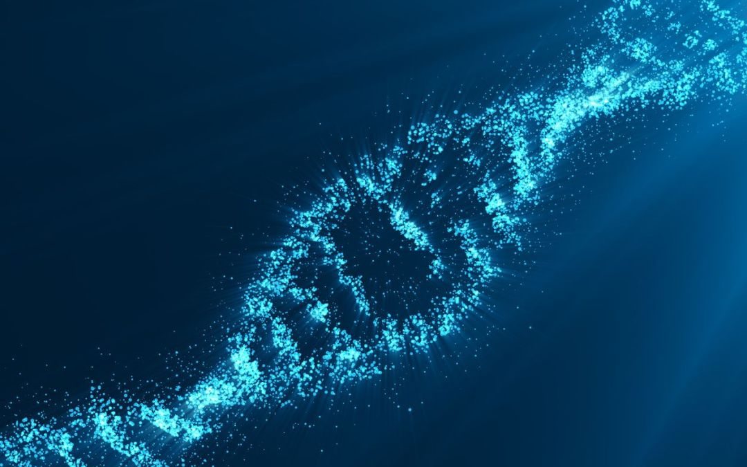 Gene Editing and the Human Future: Human Prerogative within the Natural Order