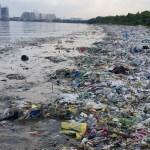climate Change-vs-Inept Stewardship