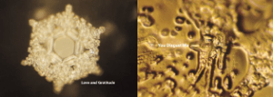 Masaru Emoto - Water Experiments