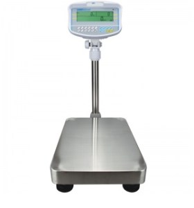 Read more about the article Floor Counting Scale