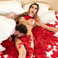 TransAngels - Passionate Petals - Casey Kisses & Nicholas Ryder