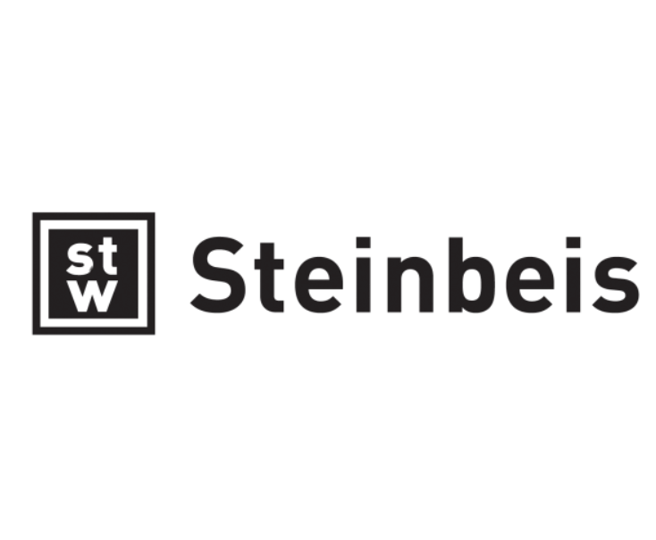 Steinbeis - Partner of Scanbalt Digital Forum 2020