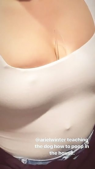 Ariel Winter Nude LEAKED Pics & Sex Tape Porn Video 25