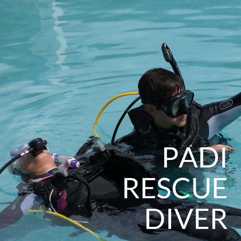 padi rescue diver course puerto galera