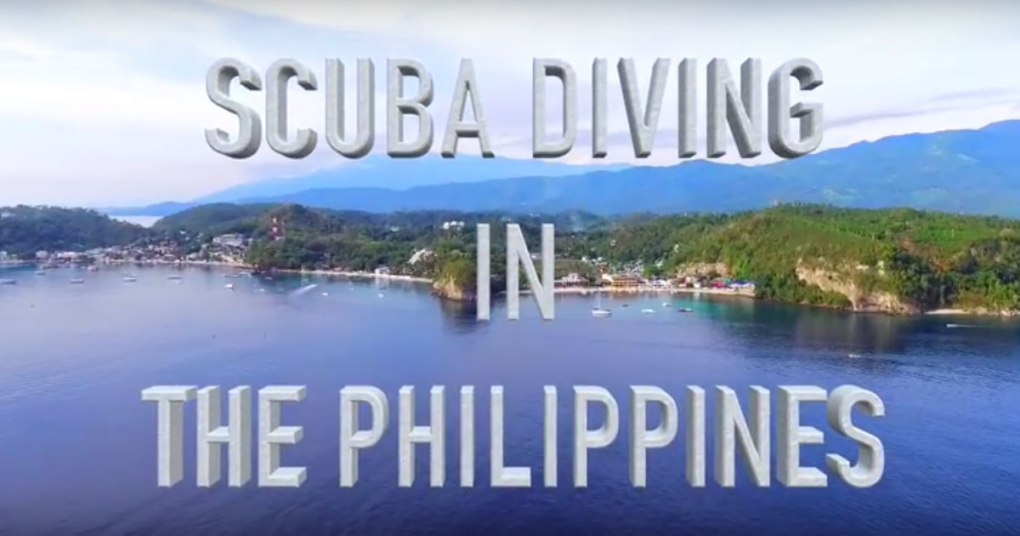 scuba diving in the philippines video scandi divers resort