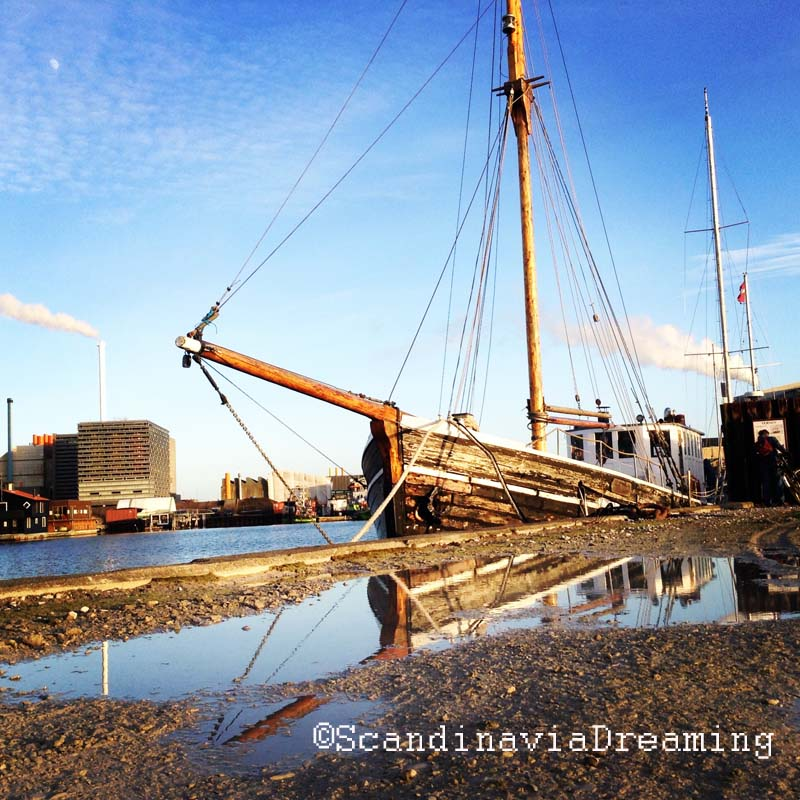 Ternen, un voilier de la fin des années 30, perdus de longues années au Groenland avant de revenir au Danemark. Il est en vente : avis aux passionnés de bricolage et de voile traditionnelle !