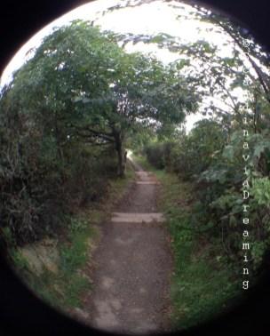 En descandant le chemin vers la pointe de Kullaberg