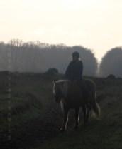 Balade en cheval à Dyrehaven