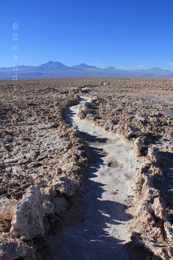 Chemin dans le désert de sel d'Atacama