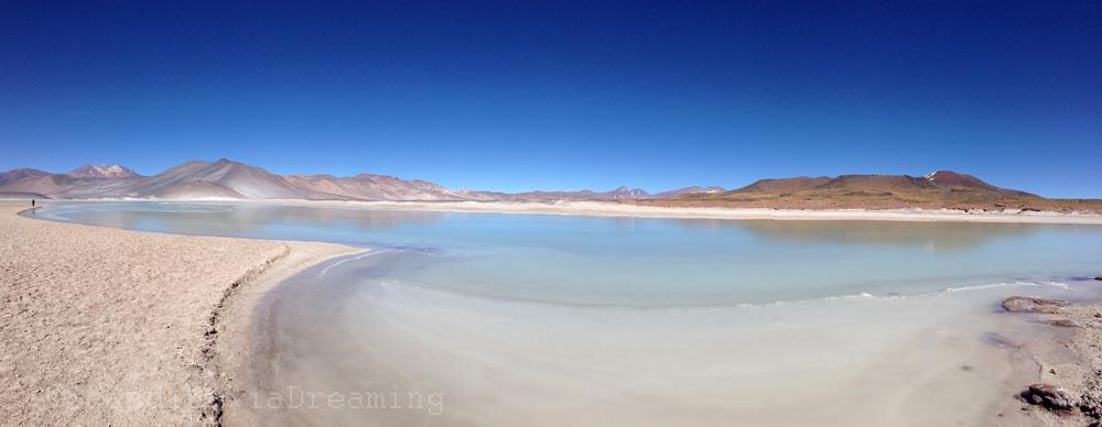 Lacs gelés dans l'Altiplanico atacamène chilien
