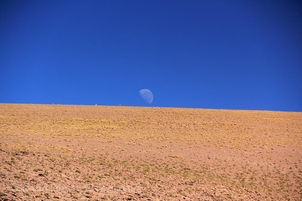 Super Lune dans le désert d'Atacama