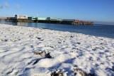 Amager strand - Les bain d'hiver ou vinterbade