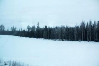 Paysage vu du train entre Helsinki et Tampere