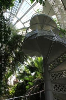 Escalier en colimaçon de la serre du jardin botanique de Copenhague