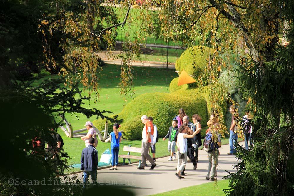 Poussin géant du jardin des plantes de Nantes