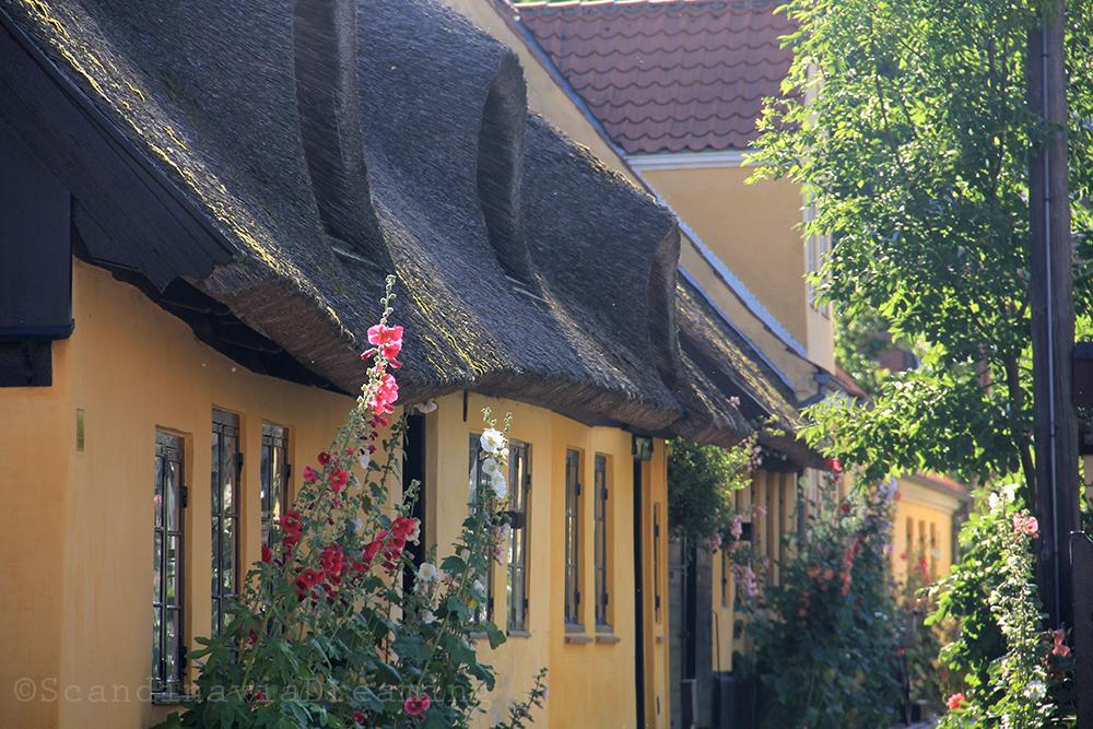 Maison à toit de chaume de Dragør