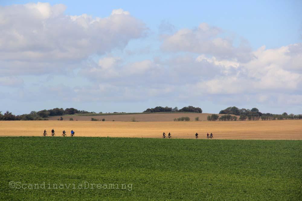 vélo dans les champs de Ven